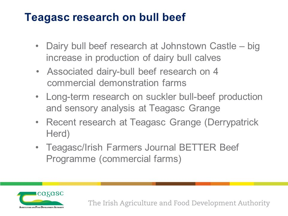Teagasc research on bull beef Dairy bull beef research at Johnstown Castle – big increase in production of dairy bull calves Associated dairy-bull beef research on 4 commercial demonstration farms Long-term research on suckler bull-beef production and sensory analysis at Teagasc Grange Recent research at Teagasc Grange (Derrypatrick Herd) Teagasc/Irish Farmers Journal BETTER Beef Programme (commercial farms)