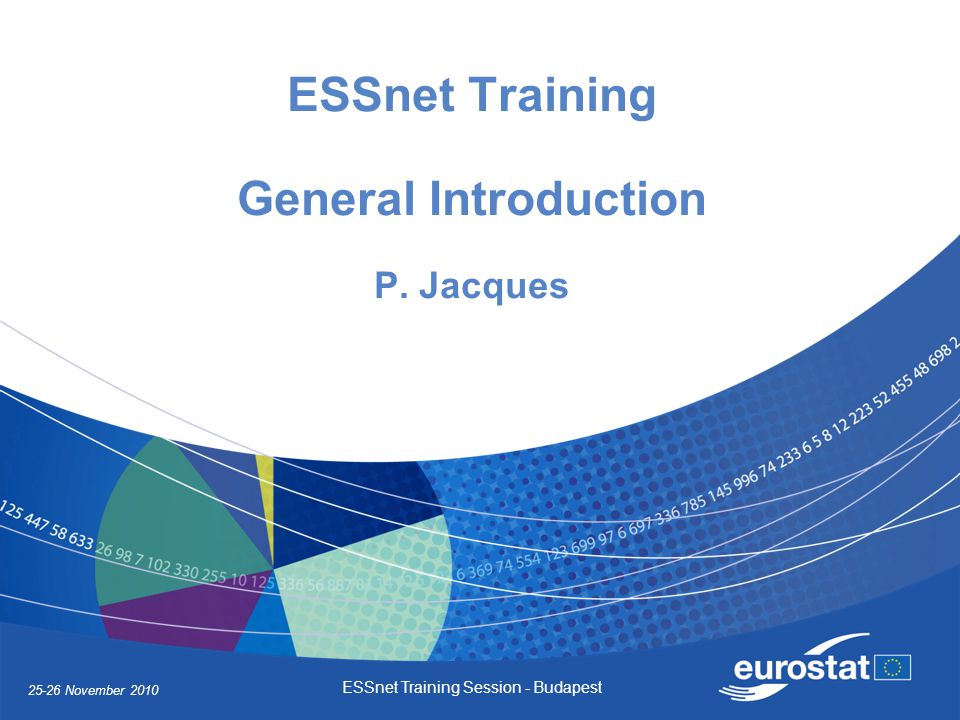 25-26 November 2010 ESSnet Training Session - Budapest ESSnet Training General Introduction P.