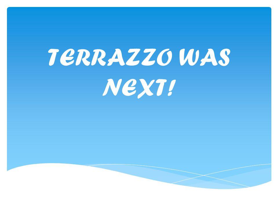 TERRAZZO WAS NEXT!