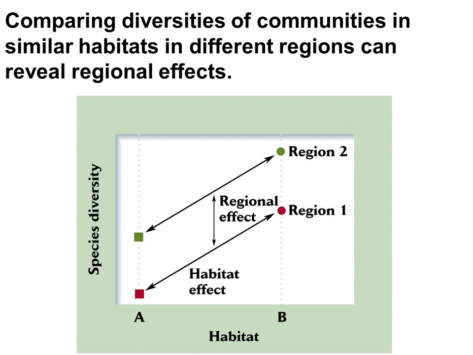 Comparing diversities of communities in similar habitats in different regions can reveal regional effects.