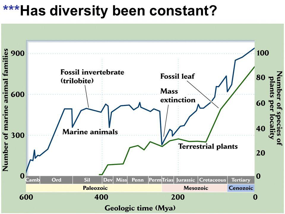 ***Has diversity been constant