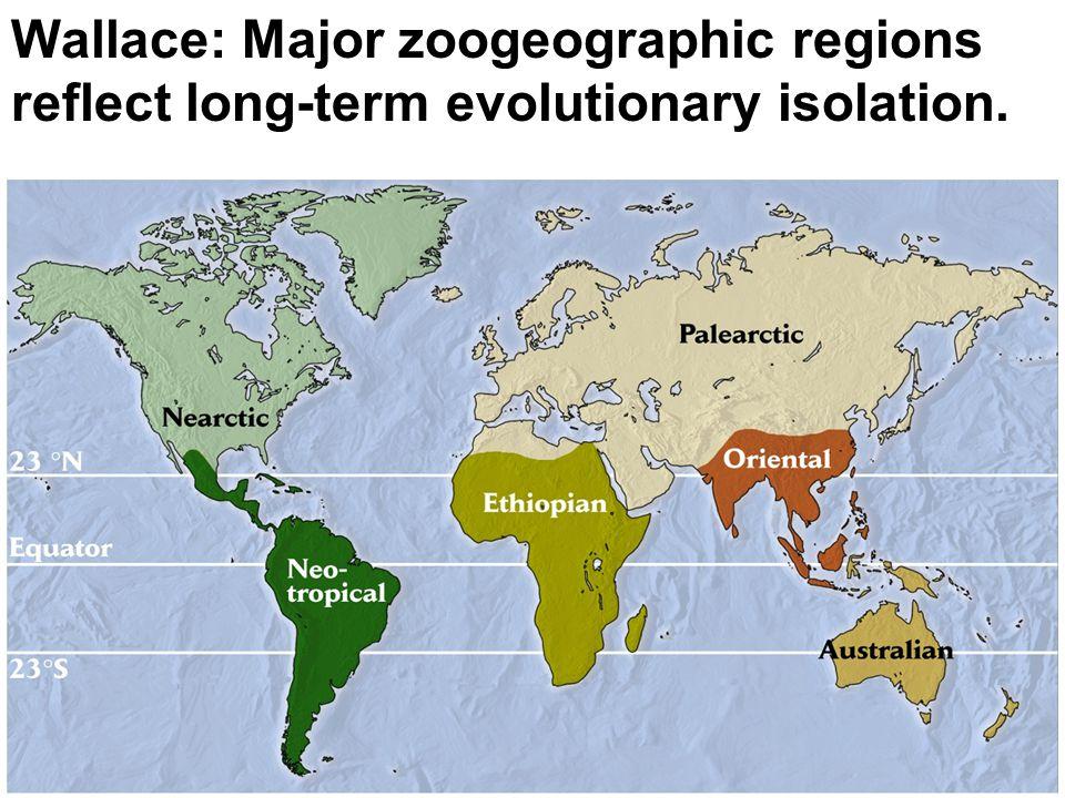 Wallace: Major zoogeographic regions reflect long-term evolutionary isolation.