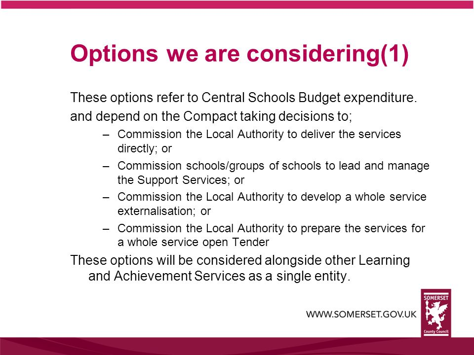 Options we are considering(1) These options refer to Central Schools Budget expenditure.