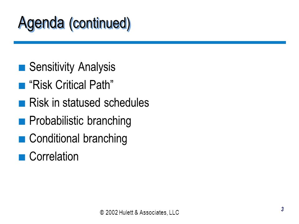 © 2002 Hulett & Associates, LLC 54 Branching in the Risk Entry Table