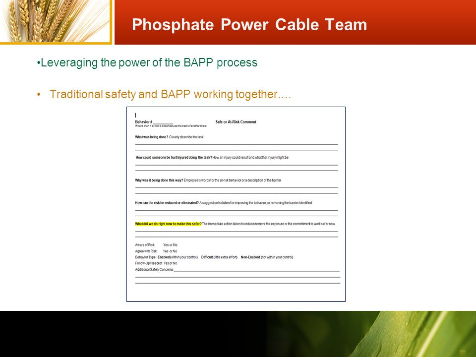 Traditional safety and BAPP working together.… Leveraging the power of the BAPP process Phosphate Power Cable Team
