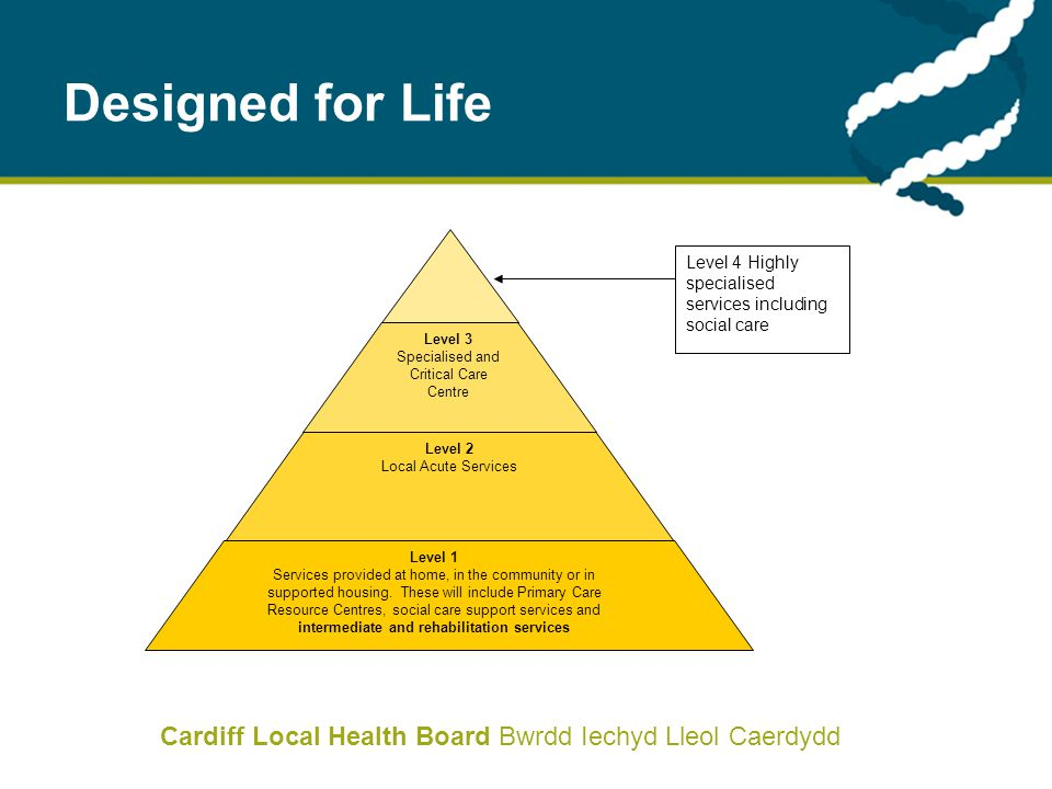 Cardiff Local Health Board Bwrdd Iechyd Lleol Caerdydd Designed for Life Level 3 Specialised and Critical Care Centre Level 2 Local Acute Services Lev