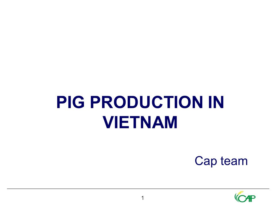 1 PIG PRODUCTION IN VIETNAM Cap team