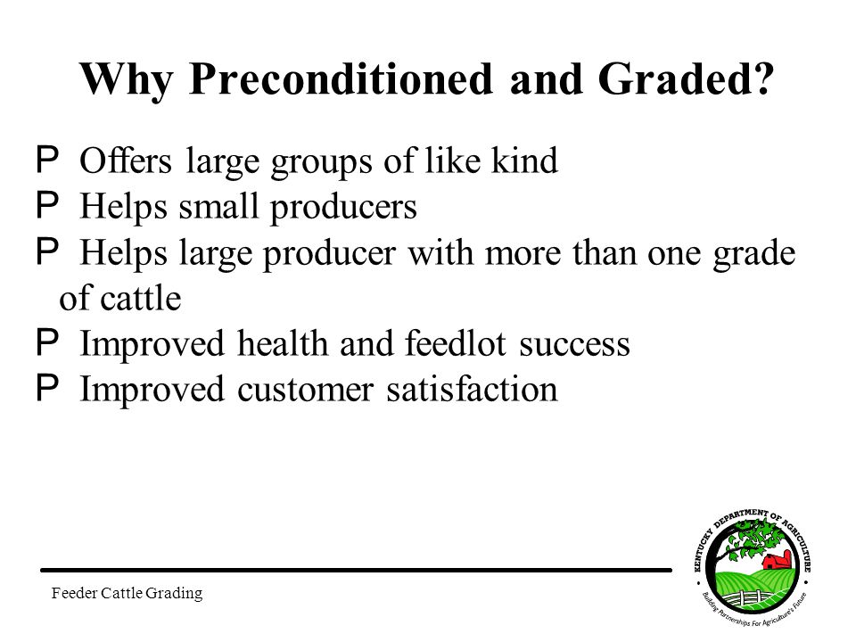 Why Preconditioned and Graded.