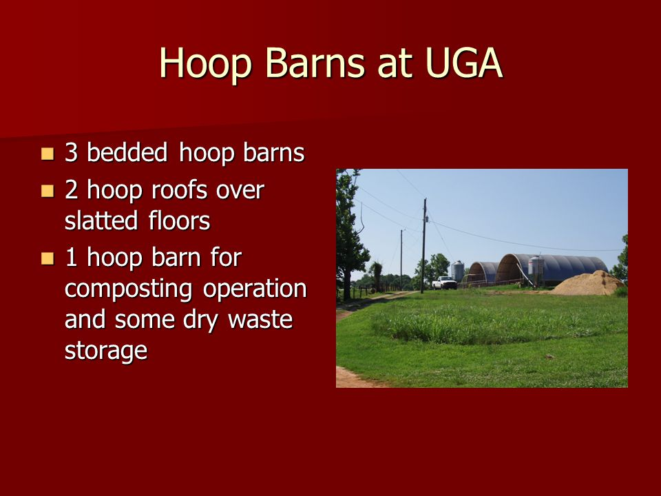 Hoop Barns at UGA 3 bedded hoop barns 3 bedded hoop barns 2 hoop roofs over slatted floors 2 hoop roofs over slatted floors 1 hoop barn for composting operation and some dry waste storage 1 hoop barn for composting operation and some dry waste storage