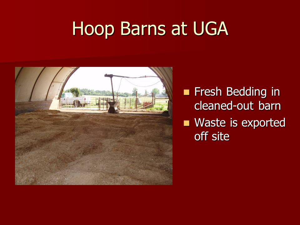 Hoop Barns at UGA Fresh Bedding in cleaned-out barn Fresh Bedding in cleaned-out barn Waste is exported off site Waste is exported off site