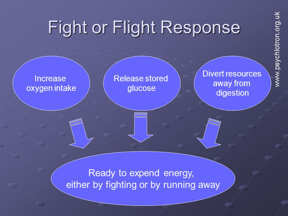 Fight or Flight Response Increase oxygen intake Release stored glucose Divert resources away from digestion Ready to expend energy, either by fighting or by running away www.psychlotron.org.uk