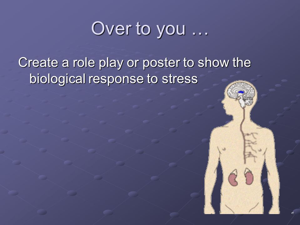Over to you … Create a role play or poster to show the biological response to stress