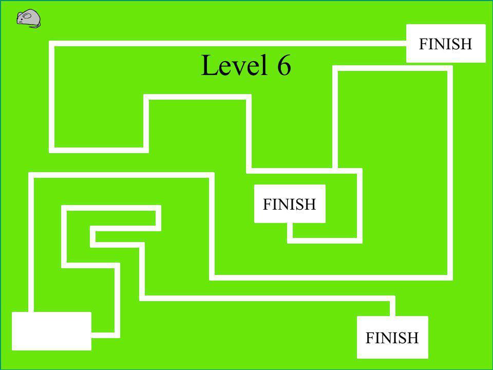 Level 5 FINISH