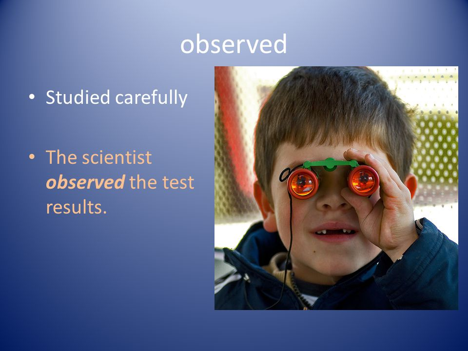 observed Studied carefully The scientist observed the test results.