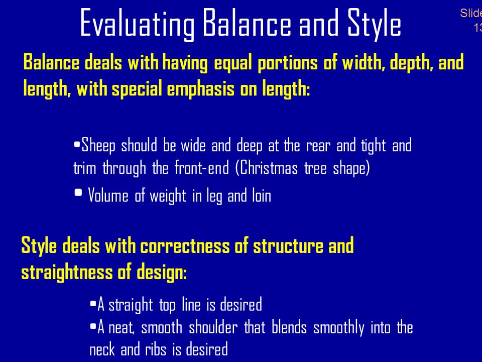 Evaluating Balance and Style Balance deals with having equal portions of width, depth, and length, with special emphasis on length: Slide 13 Sheep should be wide and deep at the rear and tight and trim through the front-end (Christmas tree shape) Volume of weight in leg and loin Style deals with correctness of structure and straightness of design: A straight top line is desired A neat, smooth shoulder that blends smoothly into the neck and ribs is desired