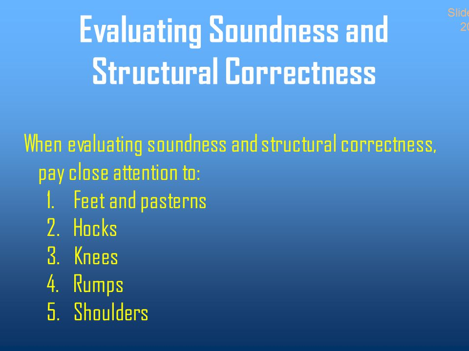 Evaluating Soundness and Structural Correctness When evaluating soundness and structural correctness, pay close attention to: 1.
