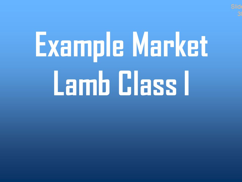 Example Market Lamb Class I Slide 30