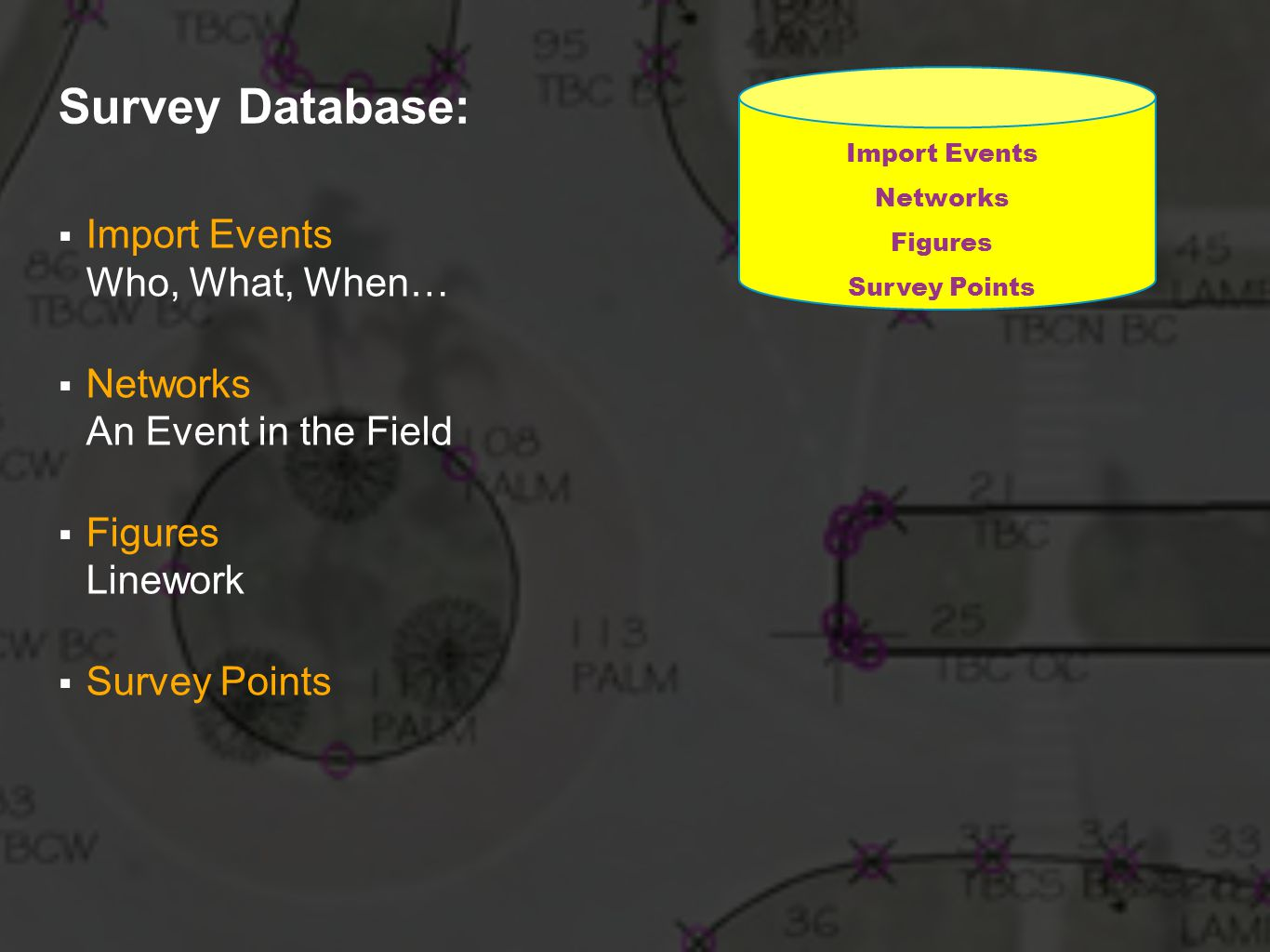 Survey Database: Import Events Who, What, When… Networks An Event in the Field Figures Linework Survey Points Import Events Networks Figures Survey Points