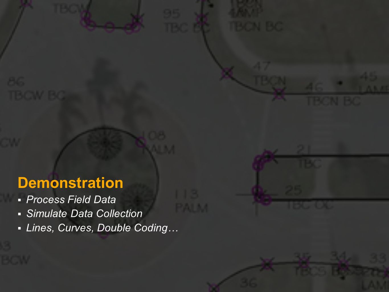 Demonstration Process Field Data Simulate Data Collection Lines, Curves, Double Coding…