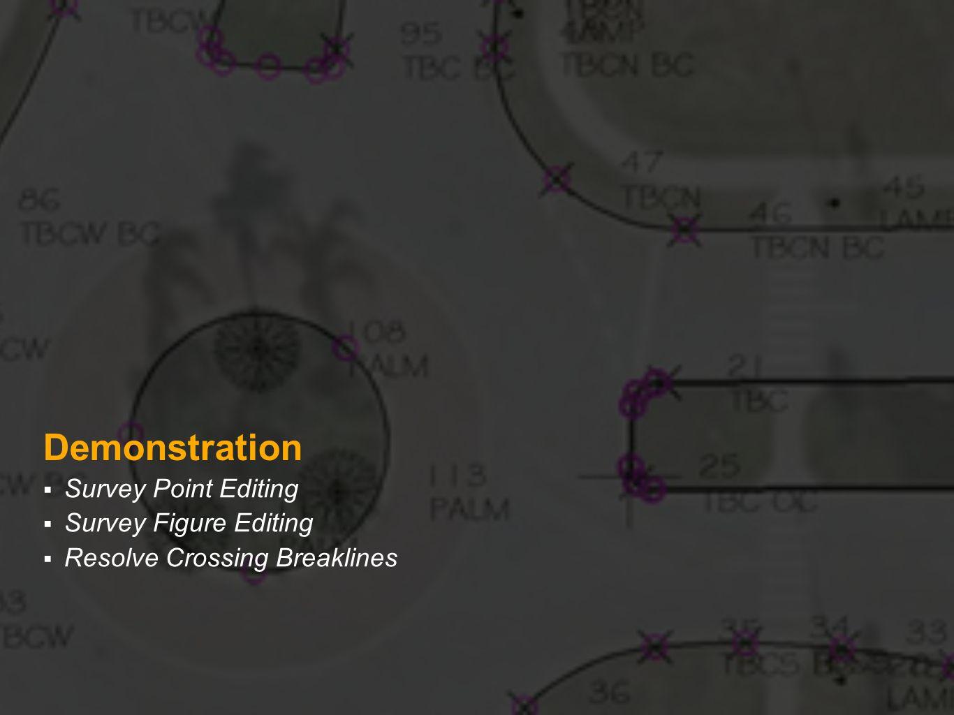 Demonstration Survey Point Editing Survey Figure Editing Resolve Crossing Breaklines