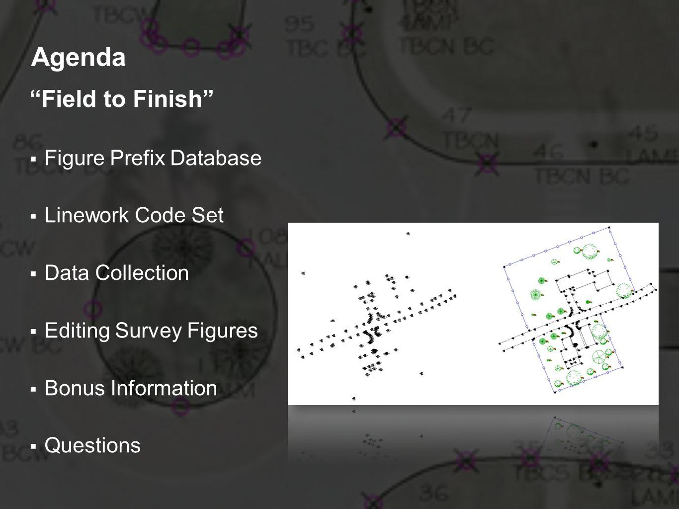 Agenda Field to Finish Figure Prefix Database Linework Code Set Data Collection Editing Survey Figures Bonus Information Questions