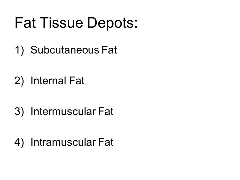 Fat Tissue Depots: 1)Subcutaneous Fat 2)Internal Fat 3)Intermuscular Fat 4)Intramuscular Fat