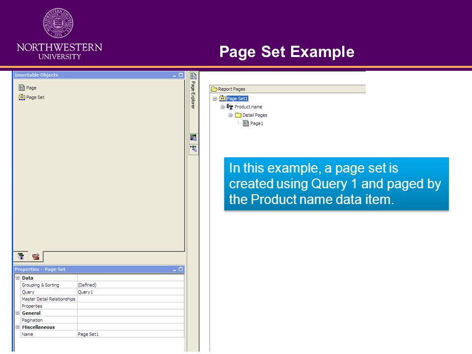 Page Set Example In this example, a page set is created using Query 1 and paged by the Product name data item.