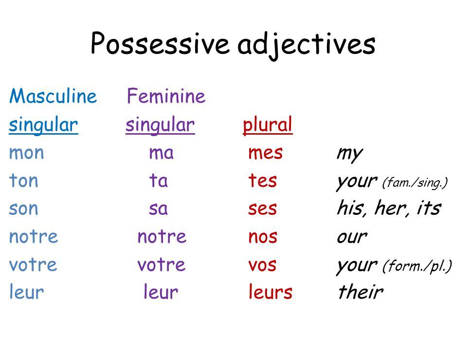Possessive adjectives Masculine Feminine singular singular plural monma mesmy tonta tesyour (fam./sing.) sonsa seshis, her, its notre notre nosour votre votre vosyour (form./pl.) leur leur leurstheir