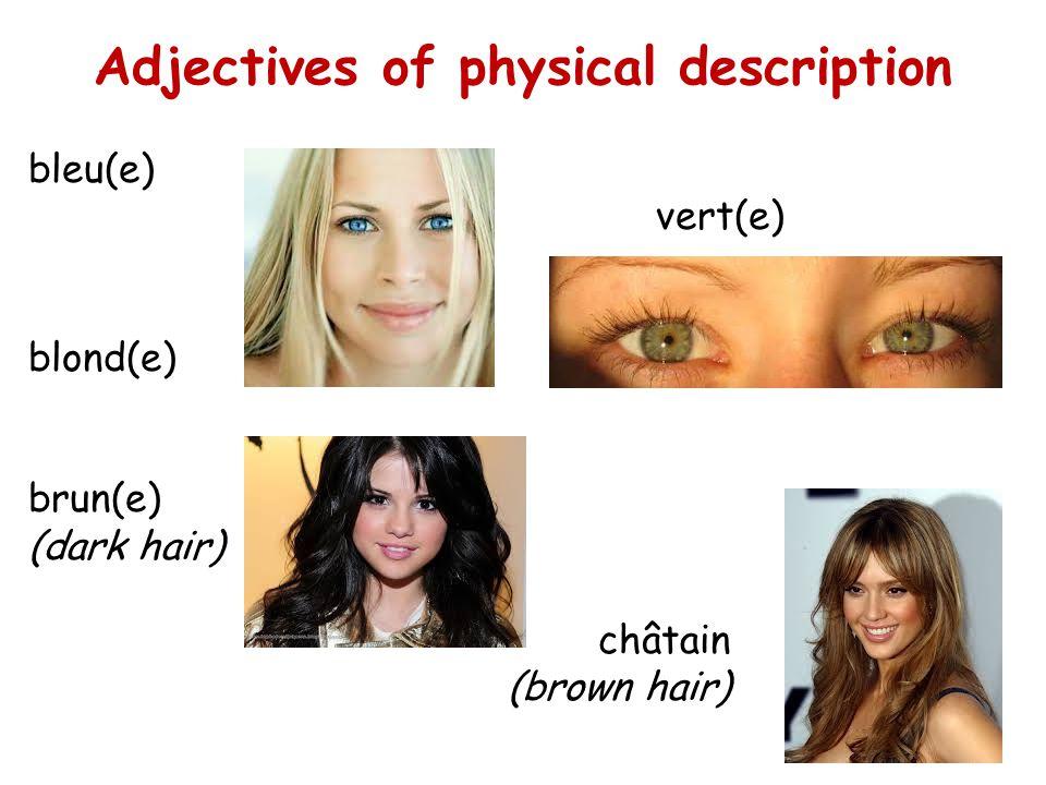 Adjectives of physical description bleu(e) vert(e) blond(e) brun(e) (dark hair) châtain (brown hair)