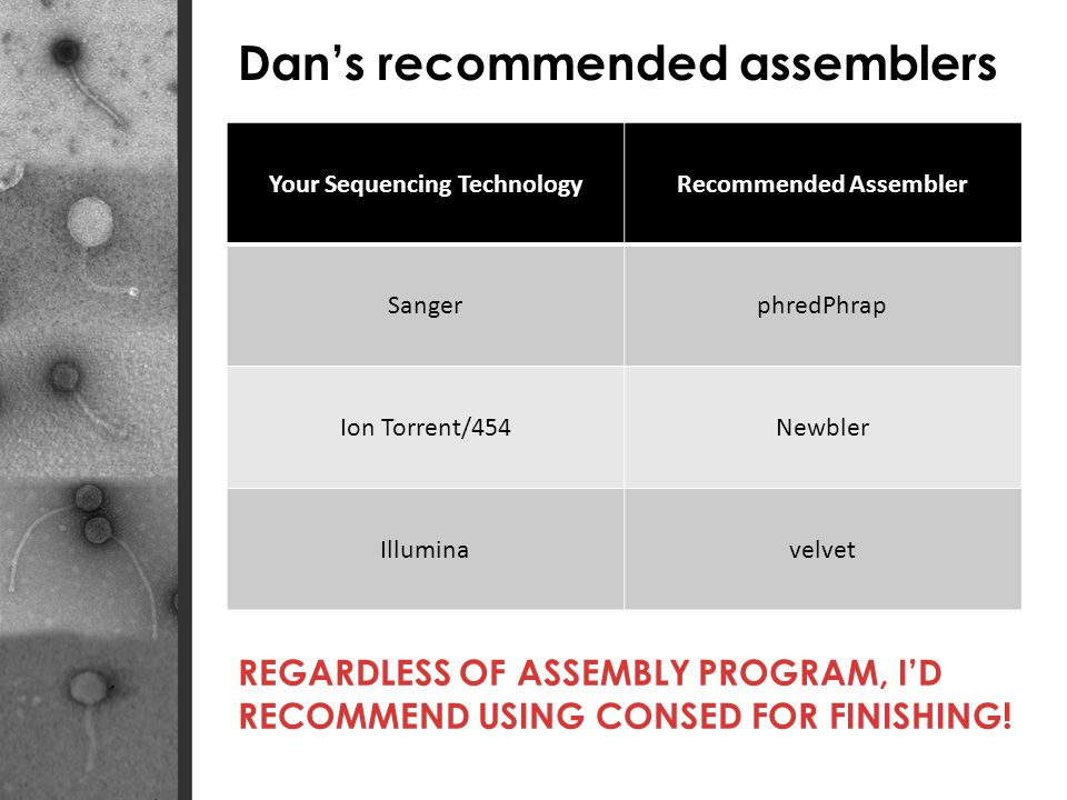 Dans recommended assemblers Your Sequencing TechnologyRecommended Assembler SangerphredPhrap Ion Torrent/454Newbler Illuminavelvet REGARDLESS OF ASSEMBLY PROGRAM, ID RECOMMEND USING CONSED FOR FINISHING!