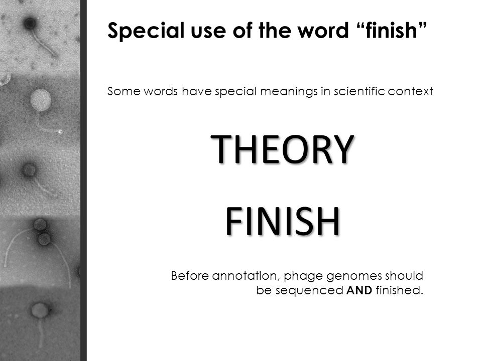 Some words have special meanings in scientific context THEORY FINISH Special use of the word finish Before annotation, phage genomes should be sequenced AND finished.