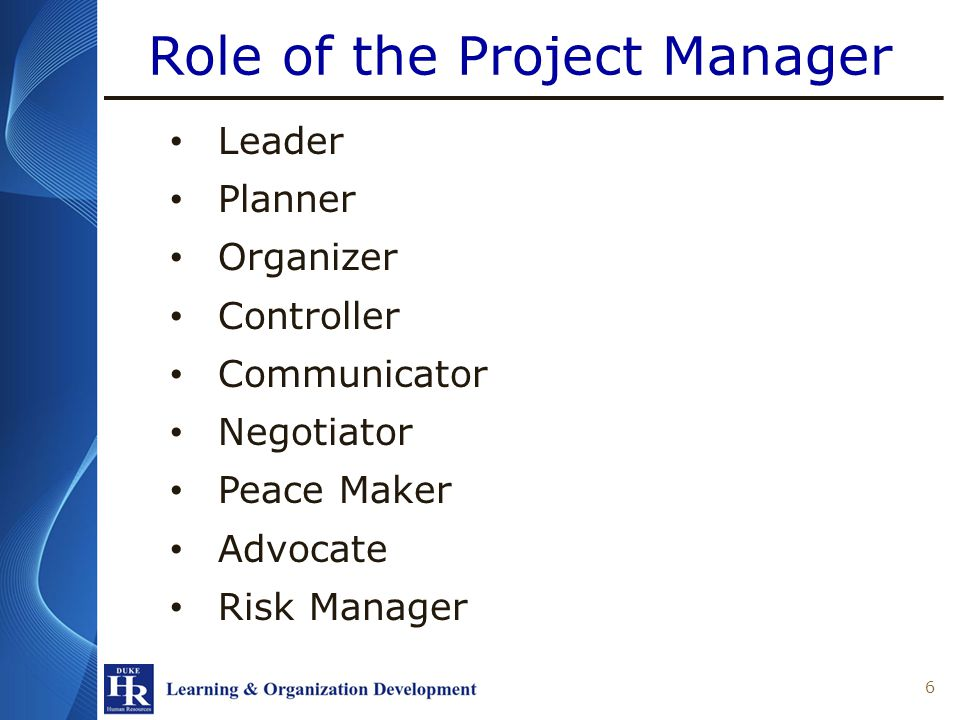 The Project Management Life Cycle 27
