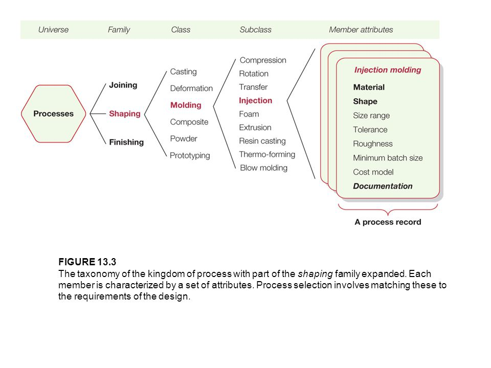 FIGURE 13.3 The taxonomy of the kingdom of process with part of the shaping family expanded. Each member is characterized by a set of attributes. Proc