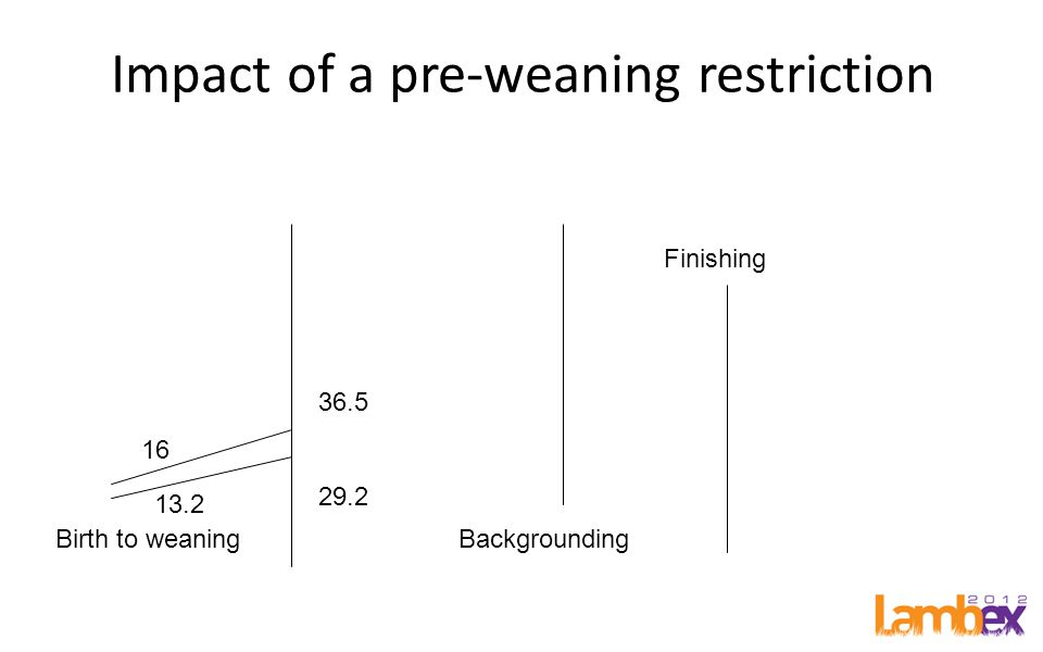 Impact of a pre-weaning restriction Birth to weaningBackgrounding Finishing 16 36.5 29.2 13.2
