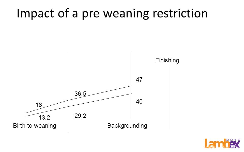 Impact of a pre weaning restriction Birth to weaningBackgrounding Finishing 16 36.5 29.2 47 40 13.2