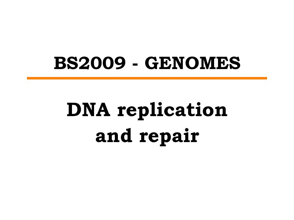 BS2009 - GENOMES DNA replication and repair
