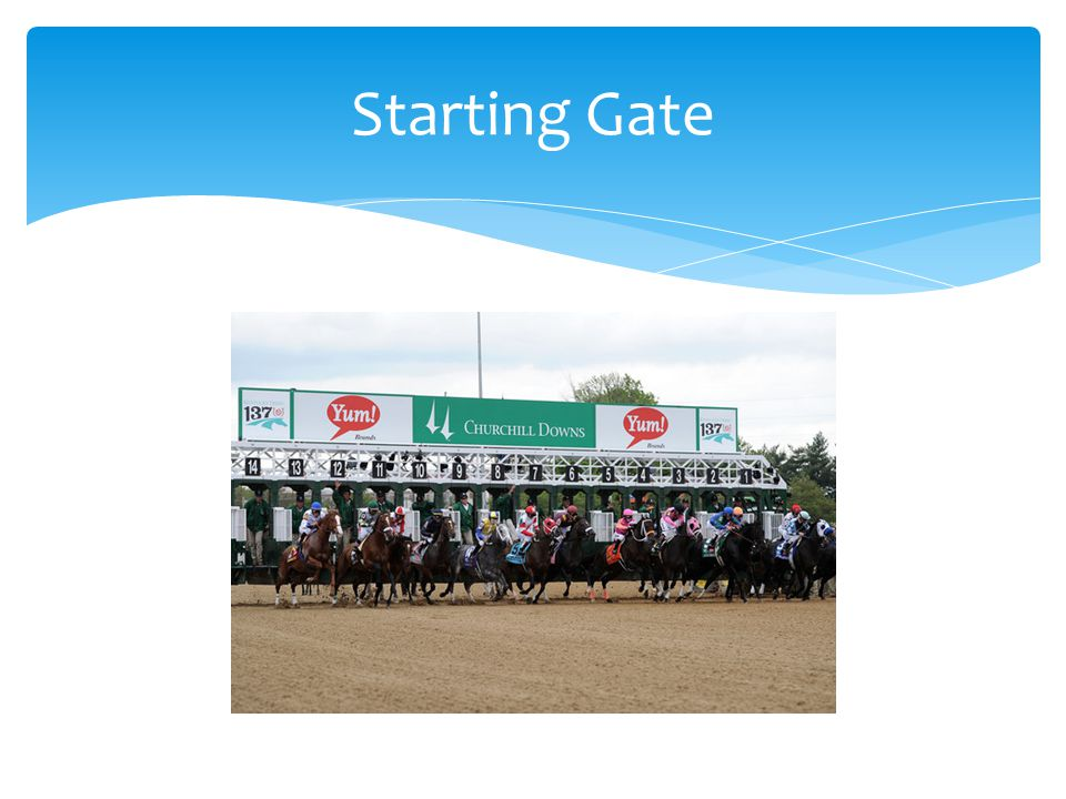 Health Information Management Patient Registration Discharge Planning Case Management Physicians Hospital Directors/Nursing Legal/Compliance Planning Marketing HR Starting Gate- All the horses in the Race