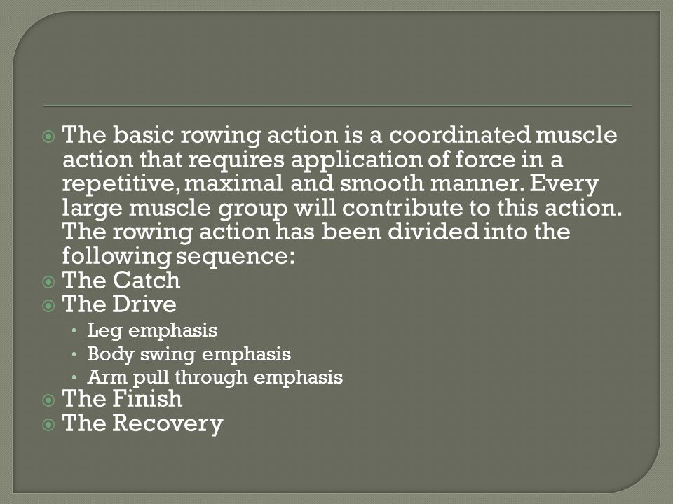 The basic rowing action is a coordinated muscle action that requires application of force in a repetitive, maximal and smooth manner.