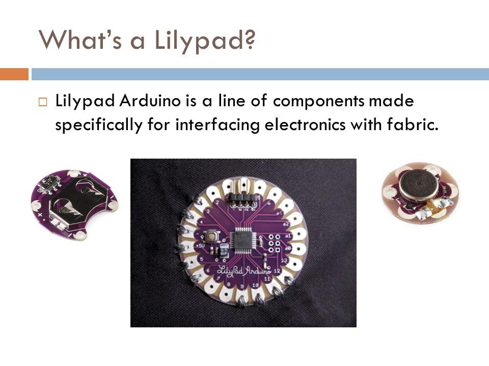 Whats a Lilypad.
