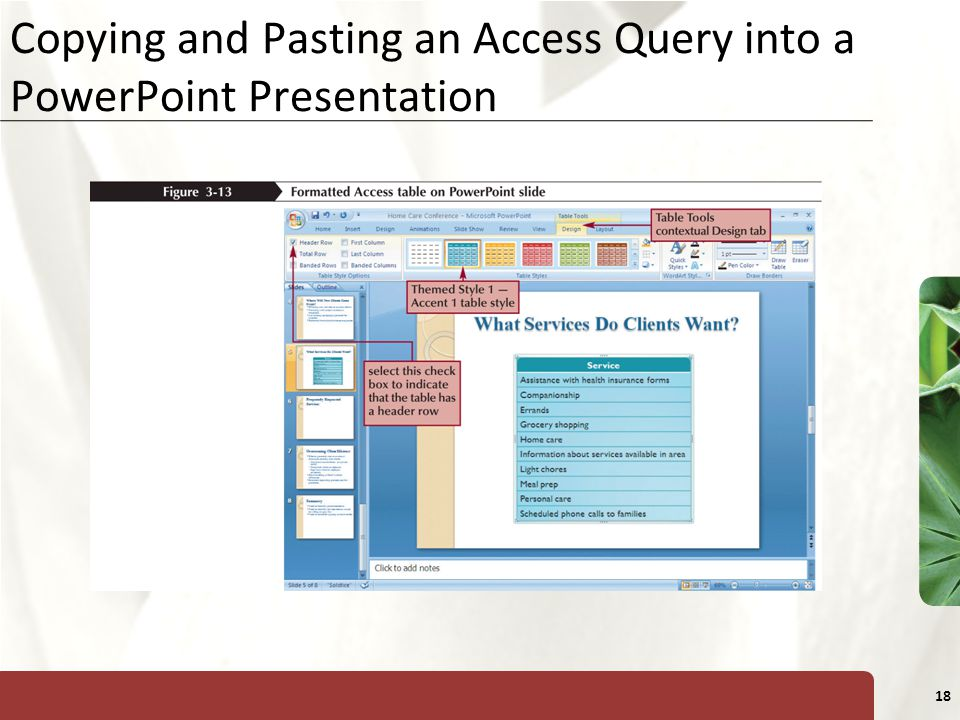 XP 18 Copying and Pasting an Access Query into a PowerPoint Presentation