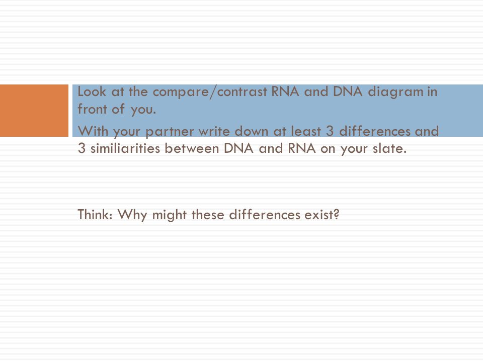 Look at the compare/contrast RNA and DNA diagram in front of you. With your partner write down at least 3 differences and 3 similiarities between DNA