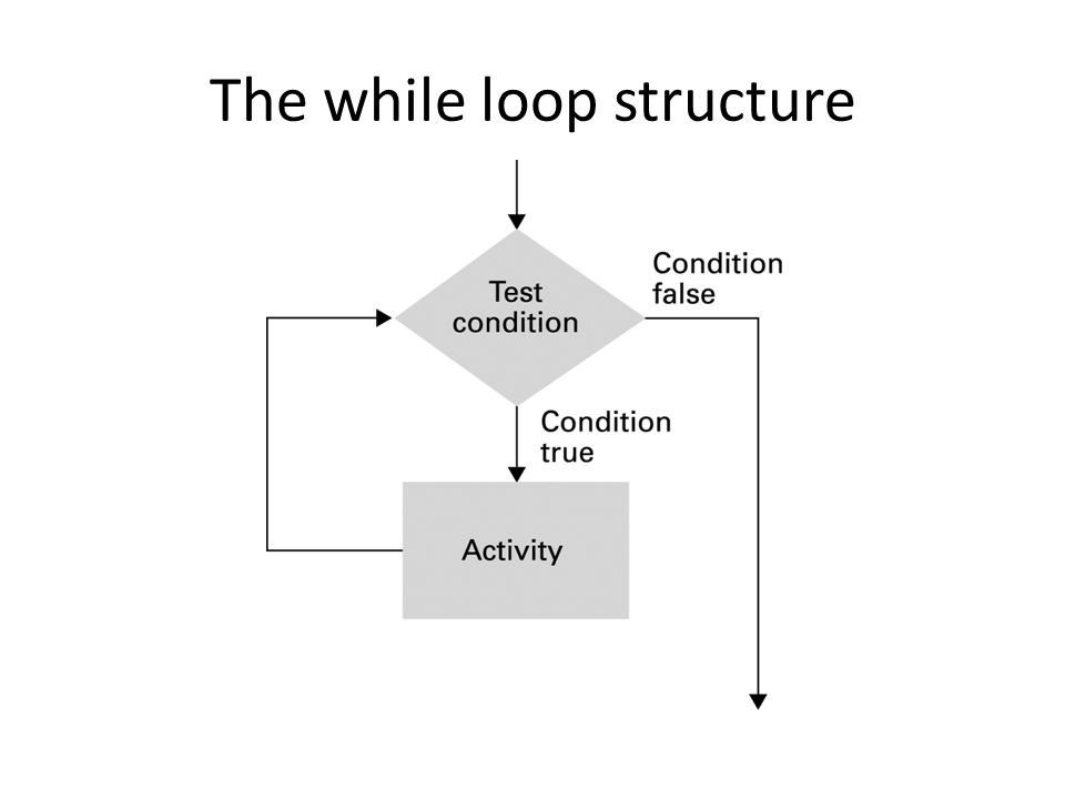 The while loop structure