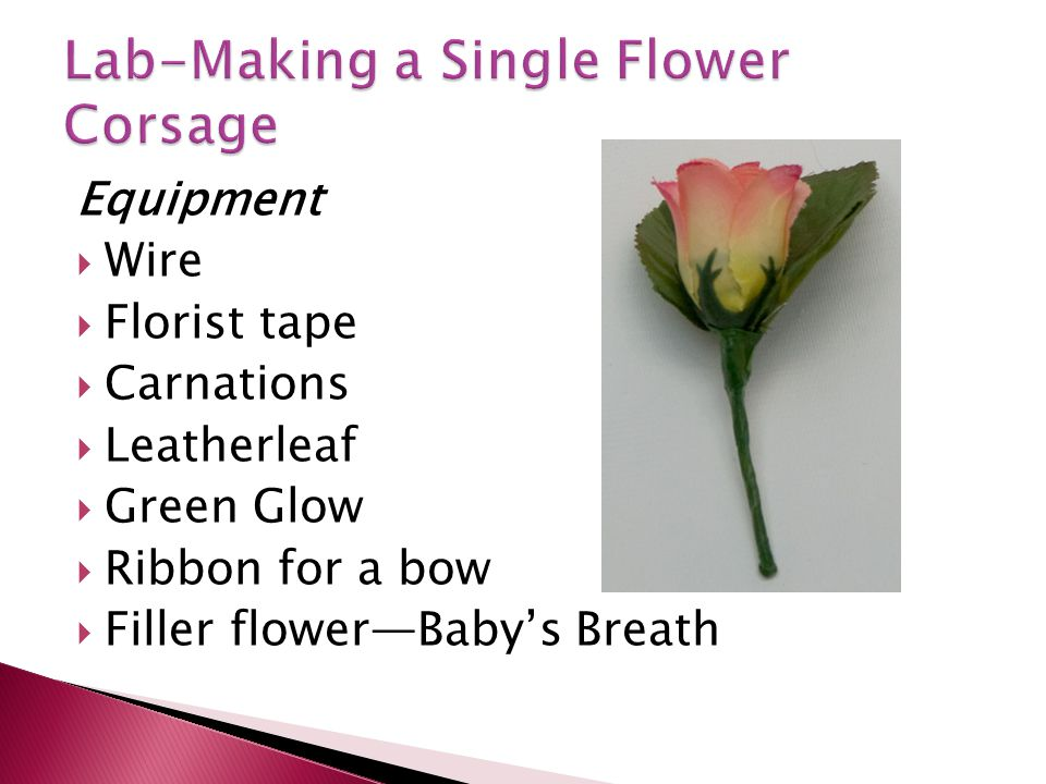 Equipment Wire Florist tape Carnations Leatherleaf Green Glow Ribbon for a bow Filler flowerBabys Breath