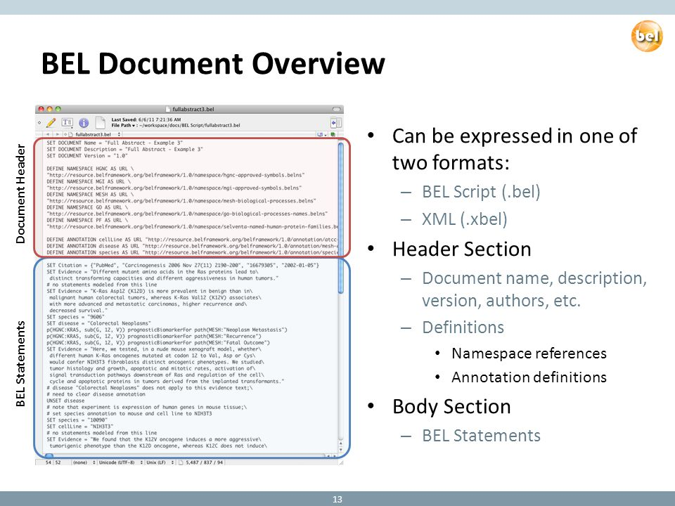 BEL Document Overview Can be expressed in one of two formats: – BEL Script (.bel) – XML (.xbel) Header Section – Document name, description, version, authors, etc.