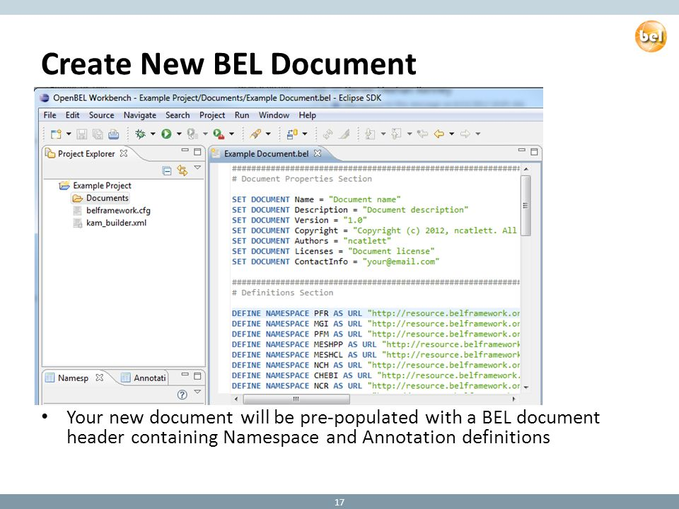 Create New BEL Document Your new document will be pre-populated with a BEL document header containing Namespace and Annotation definitions 17