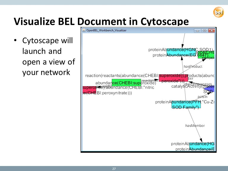 Visualize BEL Document in Cytoscape Cytoscape will launch and open a view of your network 27
