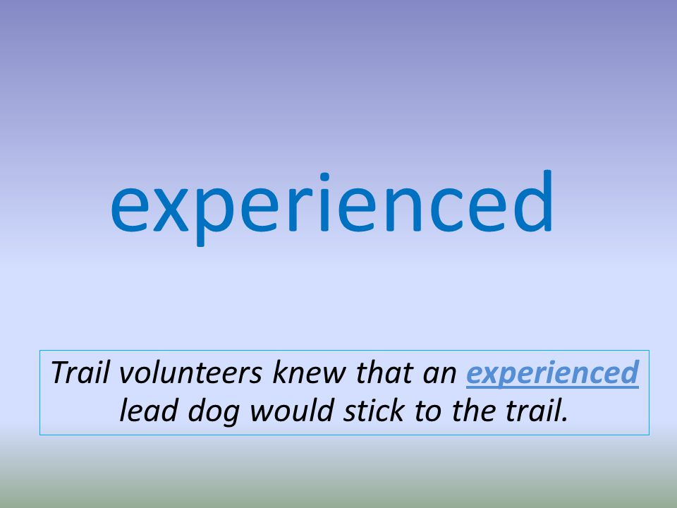experienced Trail volunteers knew that an experienced lead dog would stick to the trail.