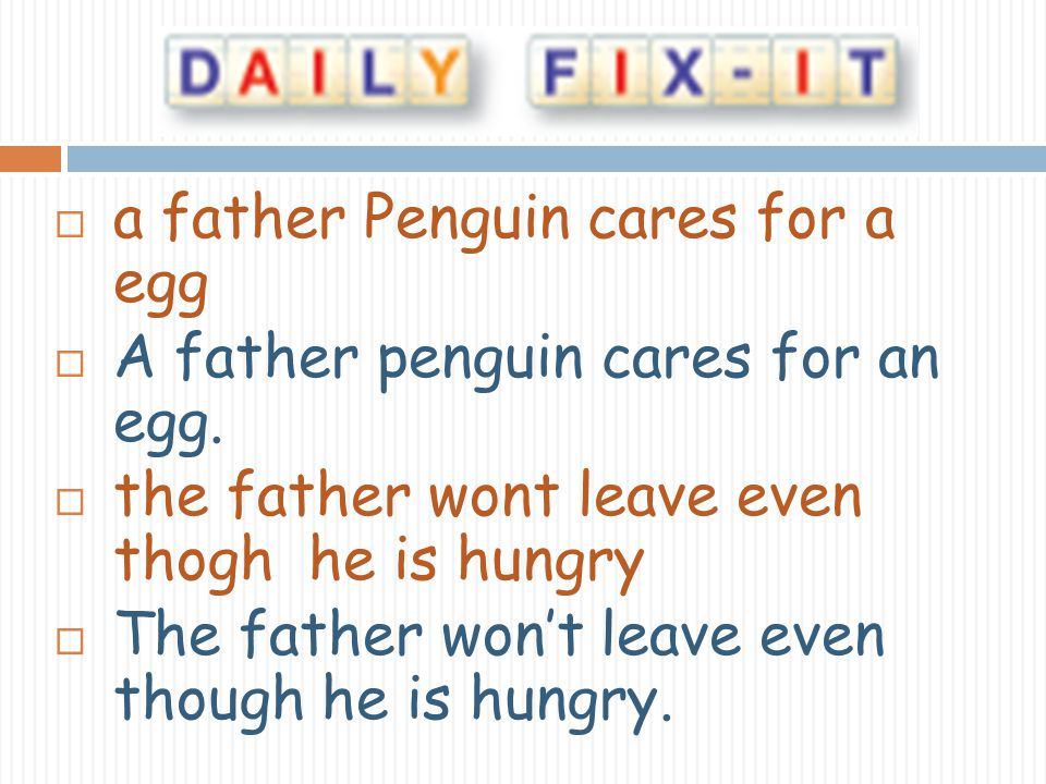 a father Penguin cares for a egg A father penguin cares for an egg. the father wont leave even thogh he is hungry The father wont leave even though he