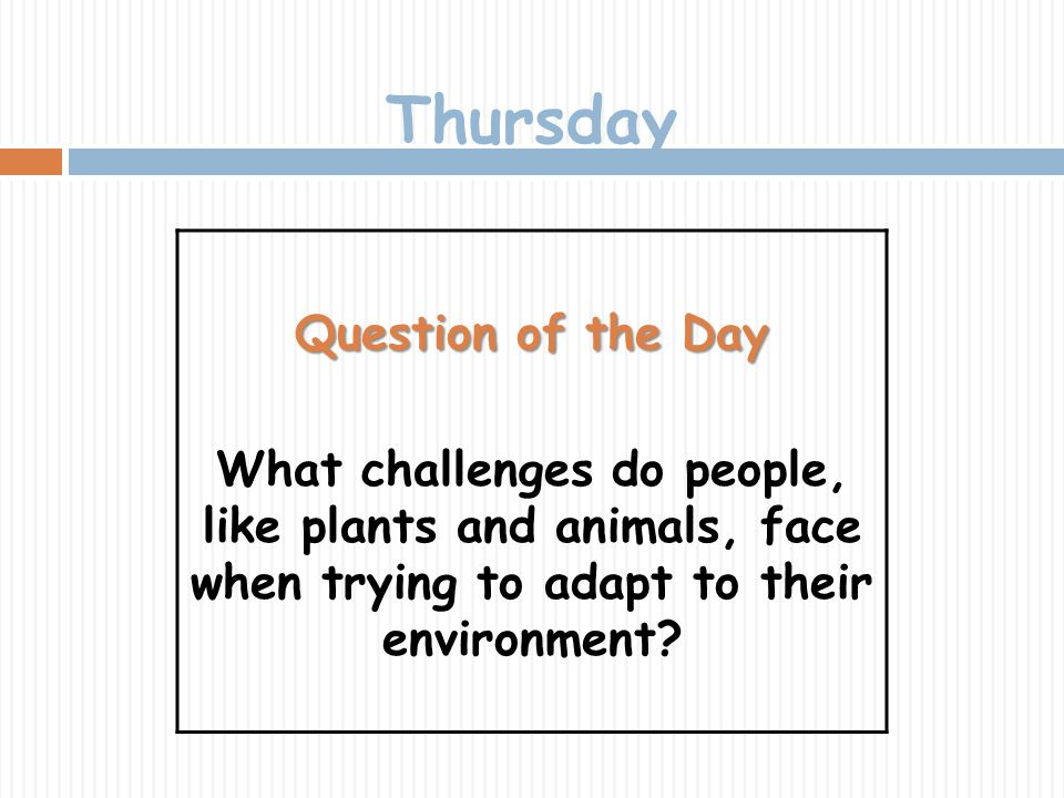 Thursday Question of the Day What challenges do people, like plants and animals, face when trying to adapt to their environment?