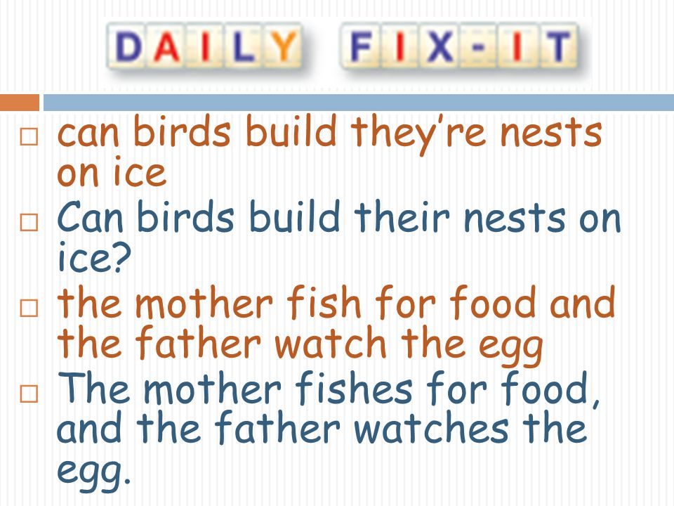 can birds build theyre nests on ice Can birds build their nests on ice? the mother fish for food and the father watch the egg The mother fishes for fo